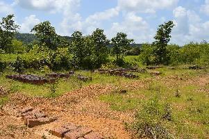 15 Acre Residential Plot for Sale in Malwan, Sindhudurg