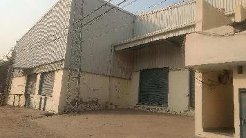 3000 Sq.ft. Warehouse for Rent in Hosiery Complex, Noida