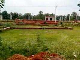 35 Bigha Farm Land for Sale in Dabla, Jaisalmer